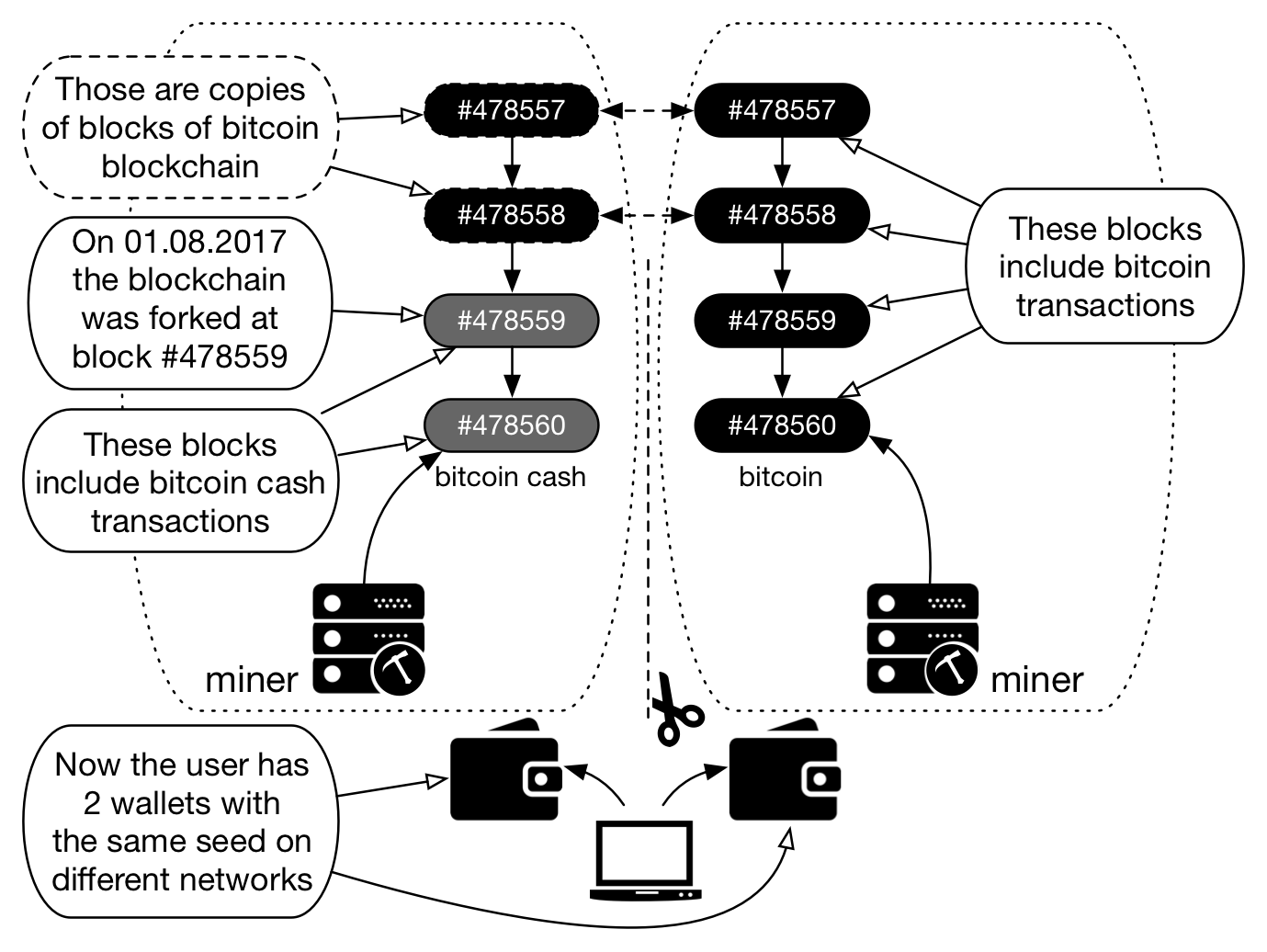 Figure 2 – Bitcoin network right after the Bitcoin Cash 'fork'